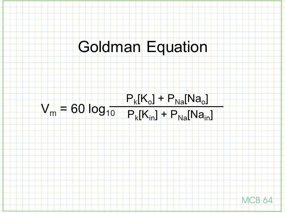 Goldman Equation Pk[Ko] + PNa[Nao] Pk[Kin] + PNa[Nain] Vm = 60 log10